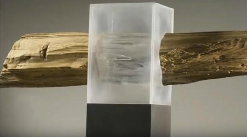 Ученые создали прозрачную древесину, которая сможет заменить пластик и стекло