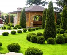 Студия флористики и декора Green Cascade — ваш лучший выбор для оформления торжества, подробнее на greencascade.com.ua